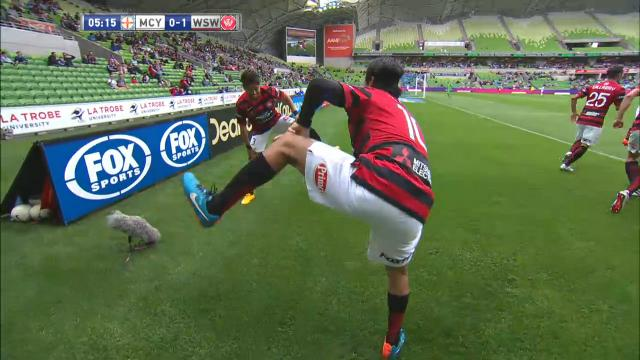 Takahagi scores for WSW