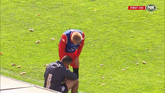 Jeggo injured at training