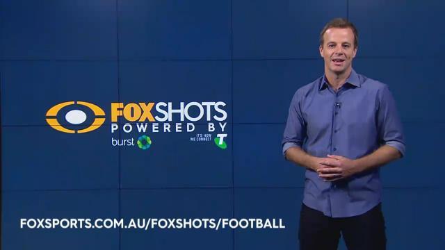 Use Fox Shots at the GF!