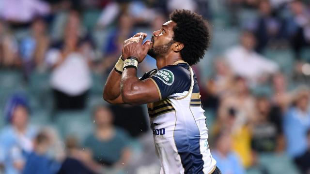 Brumbies call to arms to fans