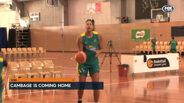 Cambage returning to WNBL