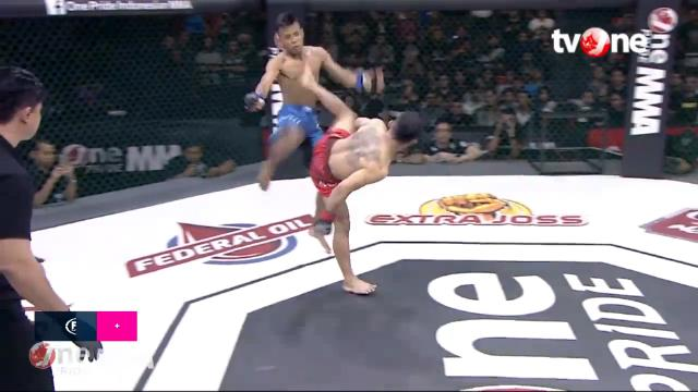 Insane spinning head kick KO