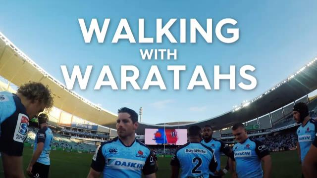 Walking with Waratahs