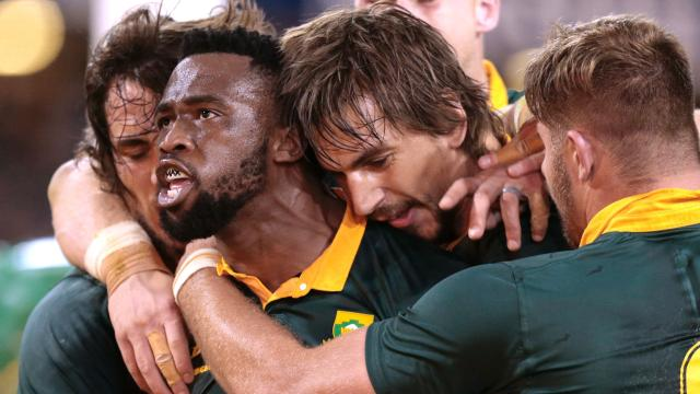 Springboks wrap up series