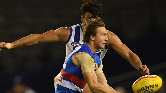 Dogs hold on in thriller